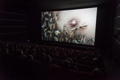 Yúyú - Berlinale Shorts 2015 - © Heinrich Volkel